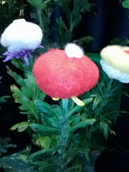 重陽の節句 菊の被綿