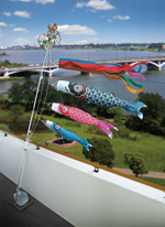 五月人形 端午の節句には鯉のぼりを揚げよう