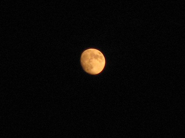 十三夜 後の月 栗名月 豆名月