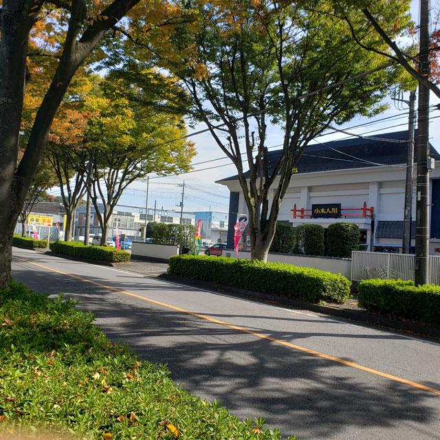 人形のまち岩槻 小木人形 店舗の風景